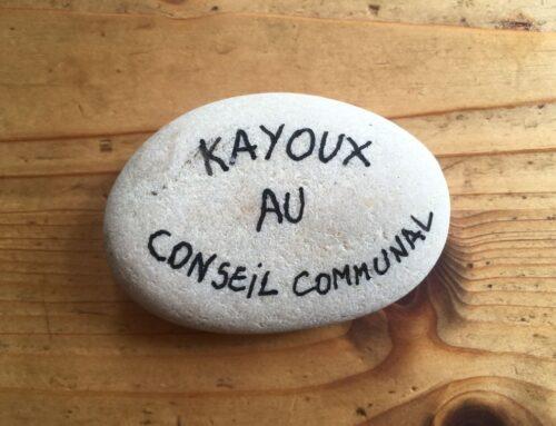 Kayoux au Conseil du 28 mai 2019